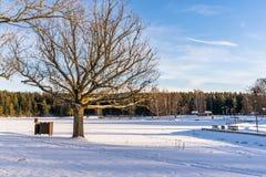 Fotoet av ett tomt parkerar på Sunny Winter Day arkivbilder