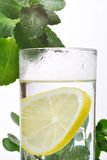 Fotoet av exponeringsglas av vatten och citronen i det med några gröna växter, vit isolerade bakgrund Royaltyfri Fotografi