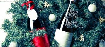 Fotoet av granen förgrena sig med två flaskor av vin, tomt hälsningkort Royaltyfri Bild