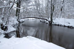 Flod i vintern. Royaltyfria Foton