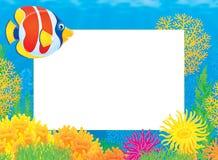 Fotofeld mit korallenroten Fischen Stockbild