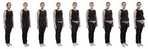 Fotofrau während der Schwangerschaft in den Jeans Stockfotos