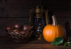 Fotogenlampa med grönsaker Royaltyfria Foton