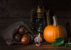 Fotogenlampa med grönsaker Arkivbilder