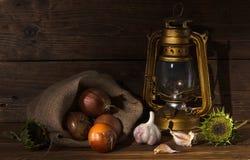 Fotogenlampa med grönsaker Royaltyfri Fotografi