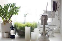 Fotogenljus, stearinljus och houseplants på fönsterbrädan Royaltyfri Fotografi