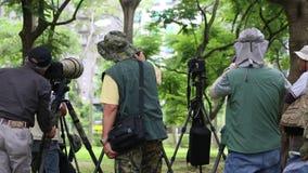 Fotograaf die de aard in Daan Forest Park van Taiwan fotograferen stock video