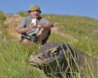 Fotograaf en Komodo-komodoensis van Drakenvaranus op eiland Rinca De Komododraak is de grootste het leven hagedis in worl royalty-vrije stock afbeeldingen