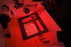 Fotograaf in het laboratorium met vergrotingsapparaatprojecten het beeld van negatief op fotodocument Stock Fotografie