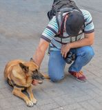 Fotograaf met hond op de straat stock fotografie