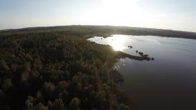 Fotografía aérea en la reserva en Bielorrusia Vuelo sobre el lago y el bosque metrajes