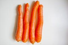 fotografía de la Aún-vida de zanahorias Imágenes de archivo libres de regalías