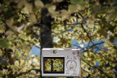 Fotografía de la cámara digital foto de archivo libre de regalías