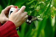 Fotografía de la mujer en el jardín de la mariposa Foto de archivo libre de regalías