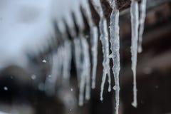 Fotografía de la nieve Imágenes de archivo libres de regalías