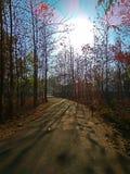Fotografía de la salida del sol Fotos de archivo