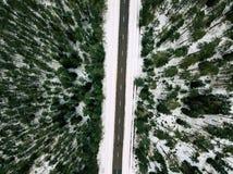Fotografía del abejón de un camino entre el bosque en invierno Imágenes de archivo libres de regalías