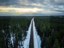Fotografía del abejón de un camino entre el bosque en invierno Fotografía de archivo