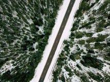 Fotografía del abejón de un camino entre el bosque en invierno Imagen de archivo libre de regalías
