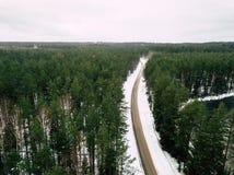 Fotografía del abejón de un camino entre el bosque en invierno Imagen de archivo