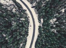 Fotografía del abejón de un camino entre el bosque en el invierno - lo del vintage Fotos de archivo