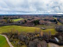 Fotografía del abejón de un campo de Letonia - bosques en nublado Imágenes de archivo libres de regalías