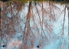 Fotografía en color de la reflexión de los árboles en el agua Imagen de archivo