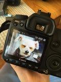 Fotografía en la fabricación Foto de archivo