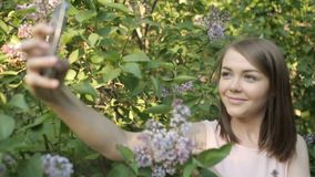 Fotografían a la muchacha hermosa en los arbustos de lila almacen de metraje de vídeo