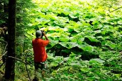 Fotograf in der Aktion Lizenzfreies Stockbild