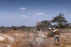 Fotograf in der Savanne Stockbilder