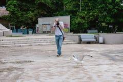 Fotograf, der versucht, ein Foto der Möve zu machen Stockfotografie