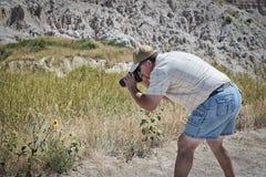 Fotograf dostaje perfect strzał słonecznik zdjęcie royalty free