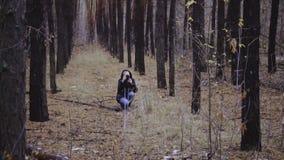 Fotograf dziewczyna bierze obrazki jesień lasu pierwszy śnieg bierze obrazki natura zbiory