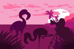 Fotograf fotografuje flaminga w naturze ilustracja wektor