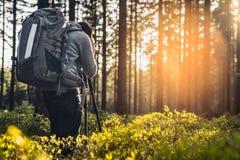 Fotograf macht ein Foto im stillen Wald im Frühjahr mit bea Lizenzfreie Stockfotografie