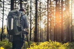 Fotograf macht ein Foto im stillen Wald im Frühjahr mit bea Stockbild