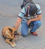 Fotograf med hunden på gatan arkivbild
