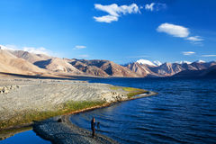 Fotograf på Pangong sjön, Indien royaltyfri foto
