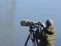 Fotograf som väntar på skalliga örnar royaltyfri fotografi