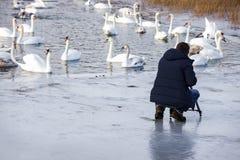 Fotografa krótkopędu krajobrazu widoku natury tripod lodu zimy kamery stylu życia fotografii wideo łabędź obsługują chłopiec sami fotografia royalty free
