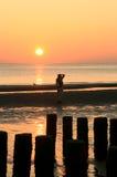 Fotografando durante il tramonto Fotografie Stock Libere da Diritti