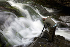 Fotografando in grande montagna fumosa NP Immagine Stock