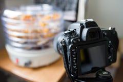 Fotografando o secador da planta Fotografia de Stock