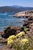 Ilha da Ilha de Elba, Toscânia, Itlay Fotos de Stock