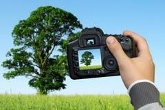 fotografera för liggandefotograf Arkivbild