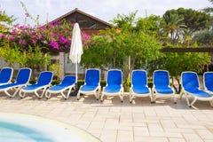 Fotografi av tomma sunbeds runt om en simbassäng med landskap trädgårdar i bakgrunden Royaltyfri Foto