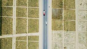 Fotografi för hög höjd; Steg fält i öknen av Xinjiang Arkivfoto