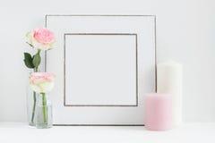 Fotografi för materiel för fyrkantig rammodell blom- utformat royaltyfri bild