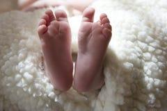 Fotografia śliczni mali cieki nowonarodzony dziecko zawijający w baranicie Zdjęcia Royalty Free